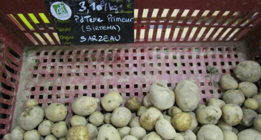 pommes de terre au magasin court circuit