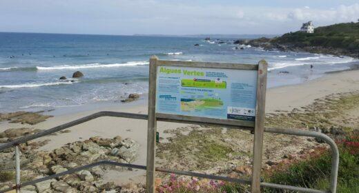 Panneaux explicatif sur le phénomène Algues vertes