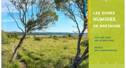 Rapport zones humides en Bretagne - FMA 2021-05
